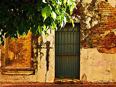 Green Leaves And Wall By Michael Fitzpatrick Print by Mexicolors Art Photography