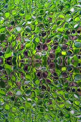 Fushia Photograph - Green Marbles by Tina M Wenger