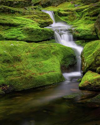 Green Moss Falls Print by Bill Wakeley