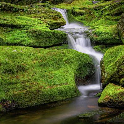 Green Moss Falls Square Print by Bill Wakeley