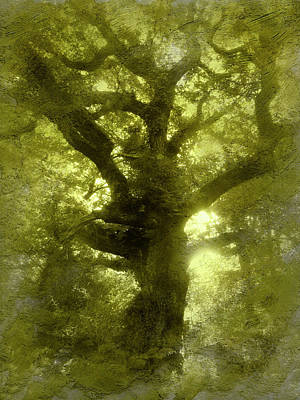 Green Oak Print by The Rambler