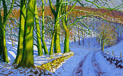 Winter Light Painting - Green Trees by Andrew Macara
