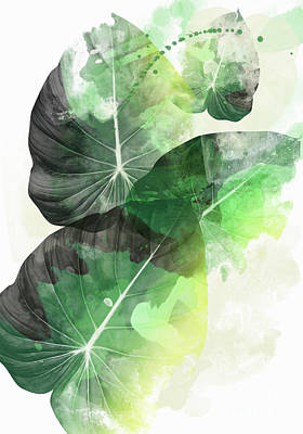Banana Digital Art - Green Tropical by Mark Ashkenazi
