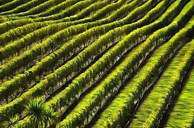 Winemaking Mixed Media - Green Vineyard Field by Dan Sproul
