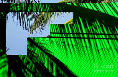 Mazatlan Photograph - Green Wall Mazatlan1 by Randall Weidner