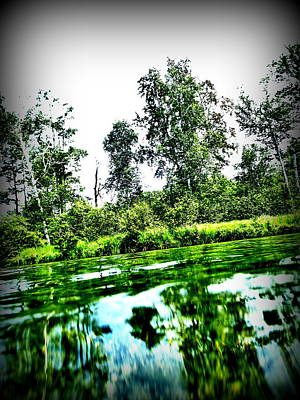 Photograph - Green Waters by Alicia Forton