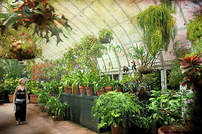 Greenhouse Stroll Print by Diana Angstadt