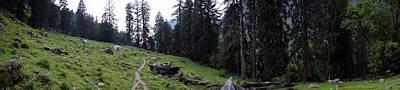 Nature Photograph - Greenscape Panorama by Sumit Mehndiratta