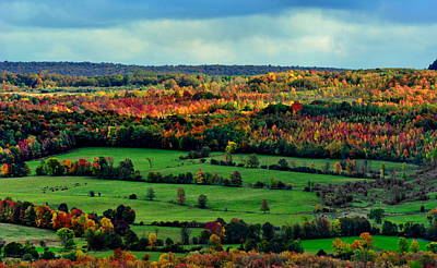 Photograph - Grey County Ontario Autumn by Andrea Kollo