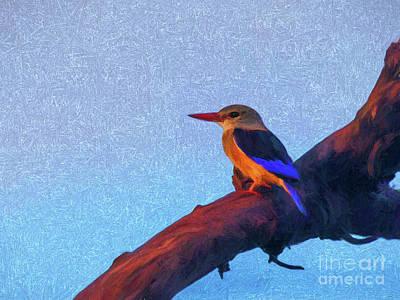 Kingfisher Digital Art - Grey-headed Kingfisher by Liz Leyden