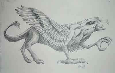 Griffon Drawing - Griffin by Byron McBride