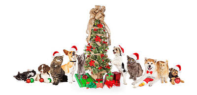 Group Of Cats And Dogs Around Christmas Tree Print by Susan Schmitz