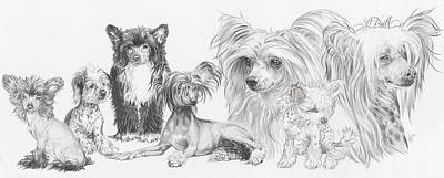 Purebred Drawing - Growing Up Chinese Crested And Powderpuff by Barbara Keith
