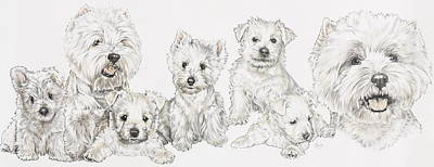 Purebred Drawing - Growing Up West Highland White Terrier by Barbara Keith