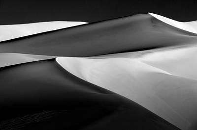 Plexiglas Photograph - Gsd Np 2-0763 by Bob Neiman