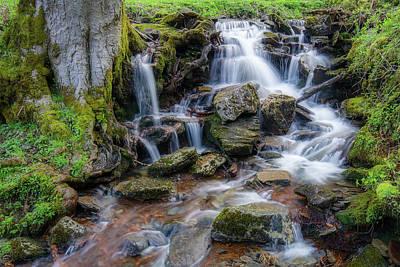 Fall Photograph - Gsmnp Waterfall Viii by Benjamin DeHaven
