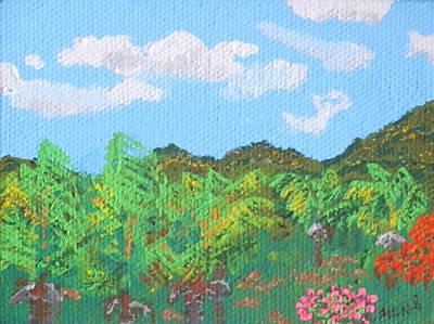 Guana Bay Hillside Print by Margaret Brooks