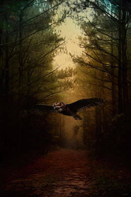 Owl In Flight Photograph - Guardian Of The Forest by Jai Johnson