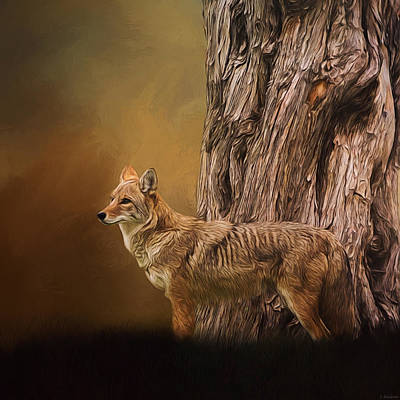 Jordan Painting - Guardian - Wildlife Art by Jordan Blackstone