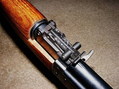 Digital Photograph - Gun - Sks - Close-up by Anastasiya Malakhova