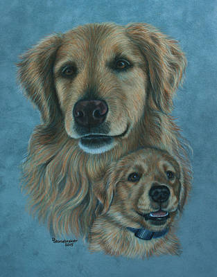 Golden Retriever Drawing - Gussy Before And After by Debbie Stonebraker