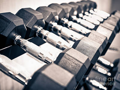 Gym Dumbbell Free Weights Rack Print by Paul Velgos