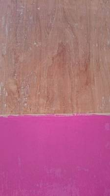 Ply Wood Photograph - Half Pink Half Wood by Helene Smith