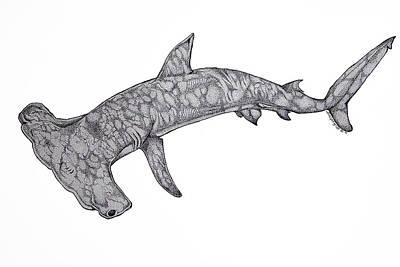 Hammerhead Shark Drawing - Hammer Head Shark by Nick Gustafson