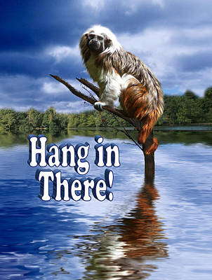 Hang In There Print by Gravityx9  Designs
