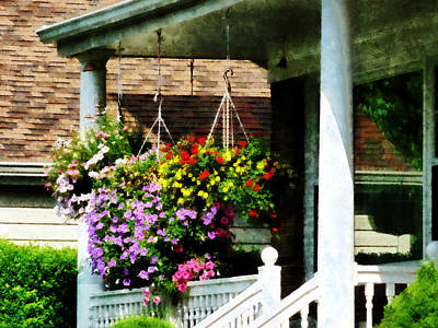 Geranium Photograph - Hanging Baskets by Susan Savad