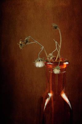 Photograph - Hanging Heads by Randi Grace Nilsberg