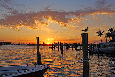 Seascape Photograph - Harbor Patrol by HH Photography of Florida