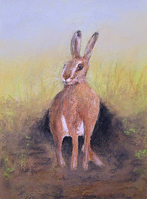 Wildlife Painting - Hare by Ken Figurski