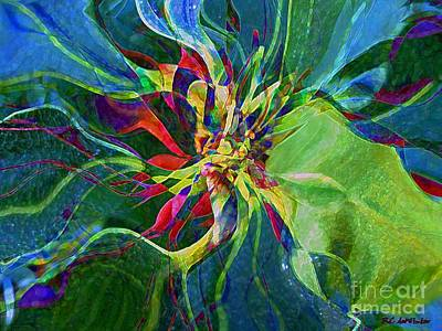 Harlequin Poinsettia Print by RC DeWinter