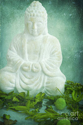Buddha Photograph - Harmony by Angela Doelling AD DESIGN Photo and PhotoArt