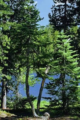 Lush Photograph - Harmony In Green And Blue - Manzanita Lake - Lassen Volcanic National Park Ca by Christine Till
