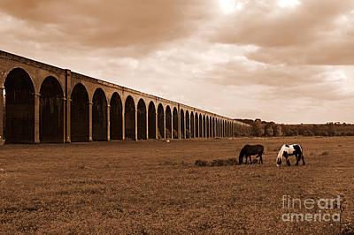Harringworth Viaduct And Horses Grazing Print by Louise Heusinkveld