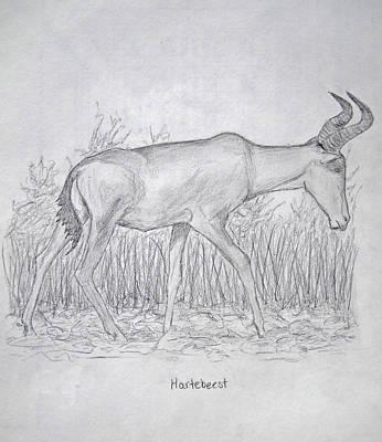 Hartebeest Print by Julia Raddatz