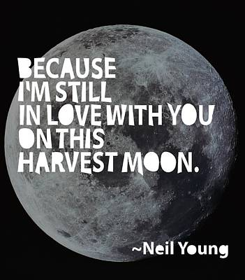 Neil Young Painting - Harvest Moon by Cindy Greenbean
