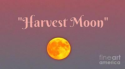 Harvest Moon Original by John Malone