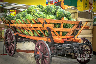 Color Photograph - Harvest Time 1 by Claudia M Photography