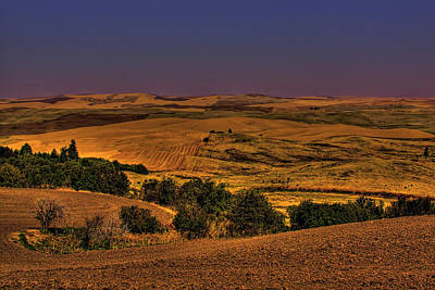 Harvested Fields Print by David Patterson
