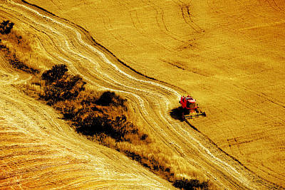 Harvesting The Crop Print by Mal Bray