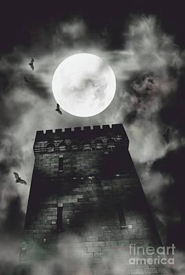 Tendrils Photograph - Haunted Dark Castle by Jorgo Photography - Wall Art Gallery