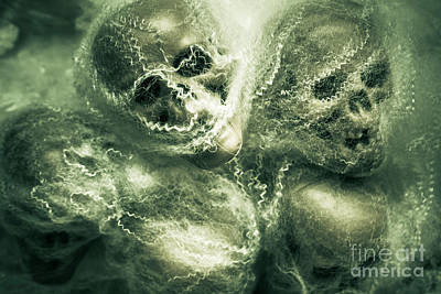 Spiderweb Photograph - Haunted Undead Skeleton Heads by Jorgo Photography - Wall Art Gallery