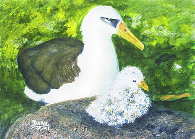 Albatross Painting - Hawaiian Layson Albatross #513 by Donald k Hall