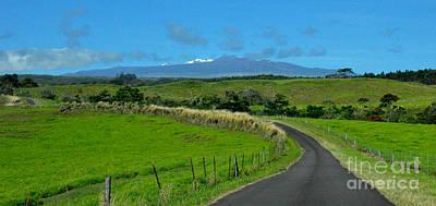Nature Photograph - Hawaiian Road by Tanya Searcy