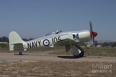 Royal Australian Navy Photograph - Hawker Sea Fury Fb Mk II N260x by Cathy Gregg