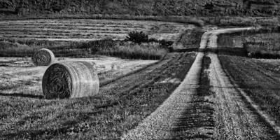 Hay Bales - Country Road Print by Nikolyn McDonald