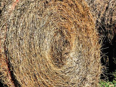Hay Bay Rolls 5 Print by Lanjee Chee